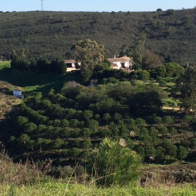 portugal-villa-vrijstaand-privacy-algarve